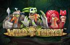 Slot - Wild Turkey